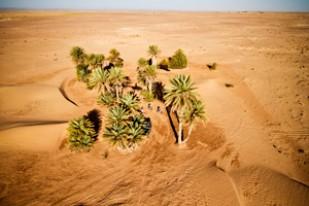 Titan Desert (Foto: Garmin)